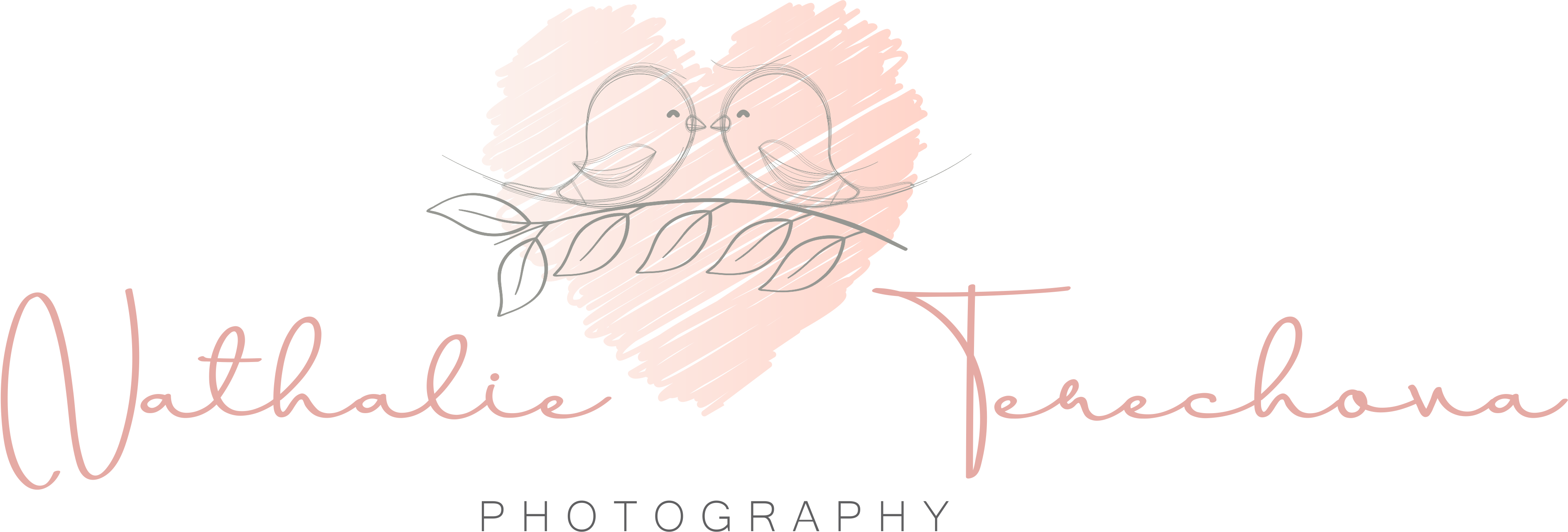 PhotoNT logo